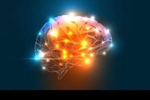 brainn_homepage1