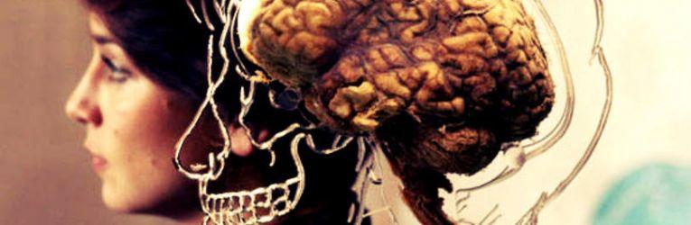 neurociencia para melhorar a concentracao