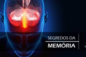 Estudo revela como as memórias de longo prazo são 'apagadas'