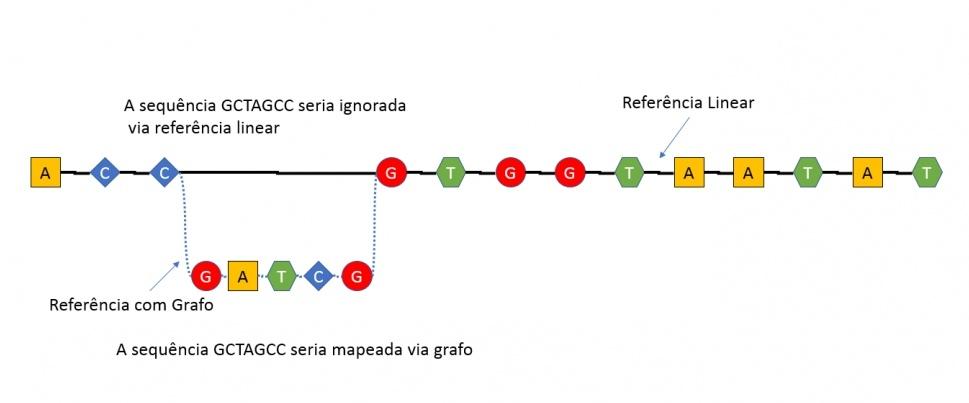genoma grafo - bipmed