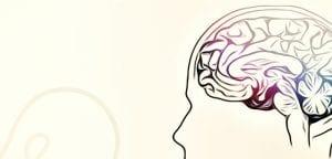 luz para enxergar o cerebro 2017